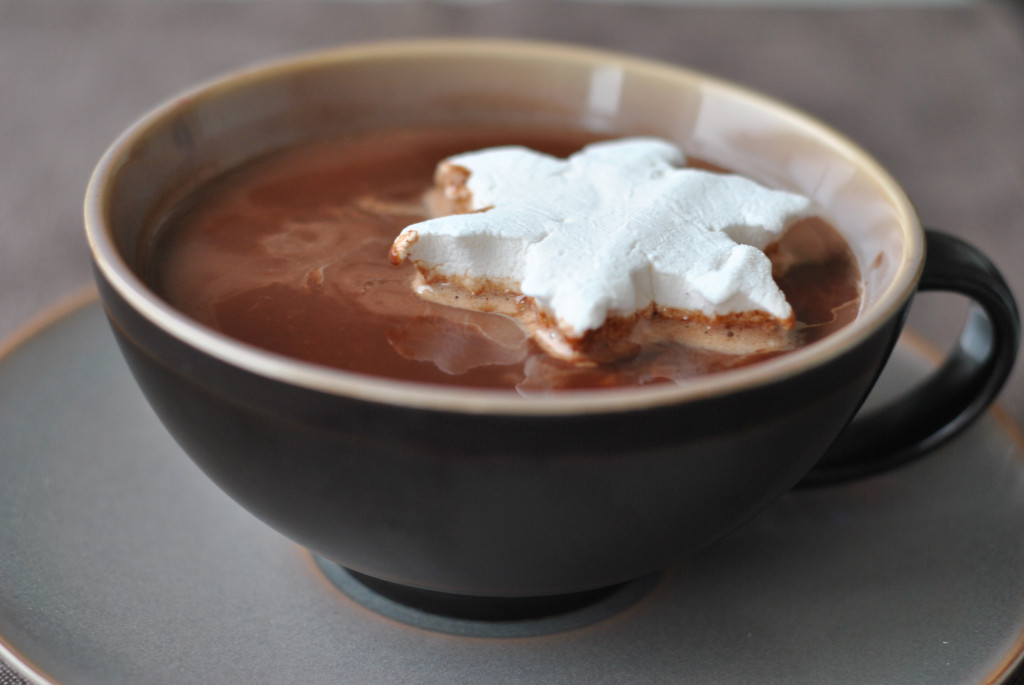 Rich and creamy hot chocolate made with high quality melted chocolate, cream and milk. Dessert is ready!